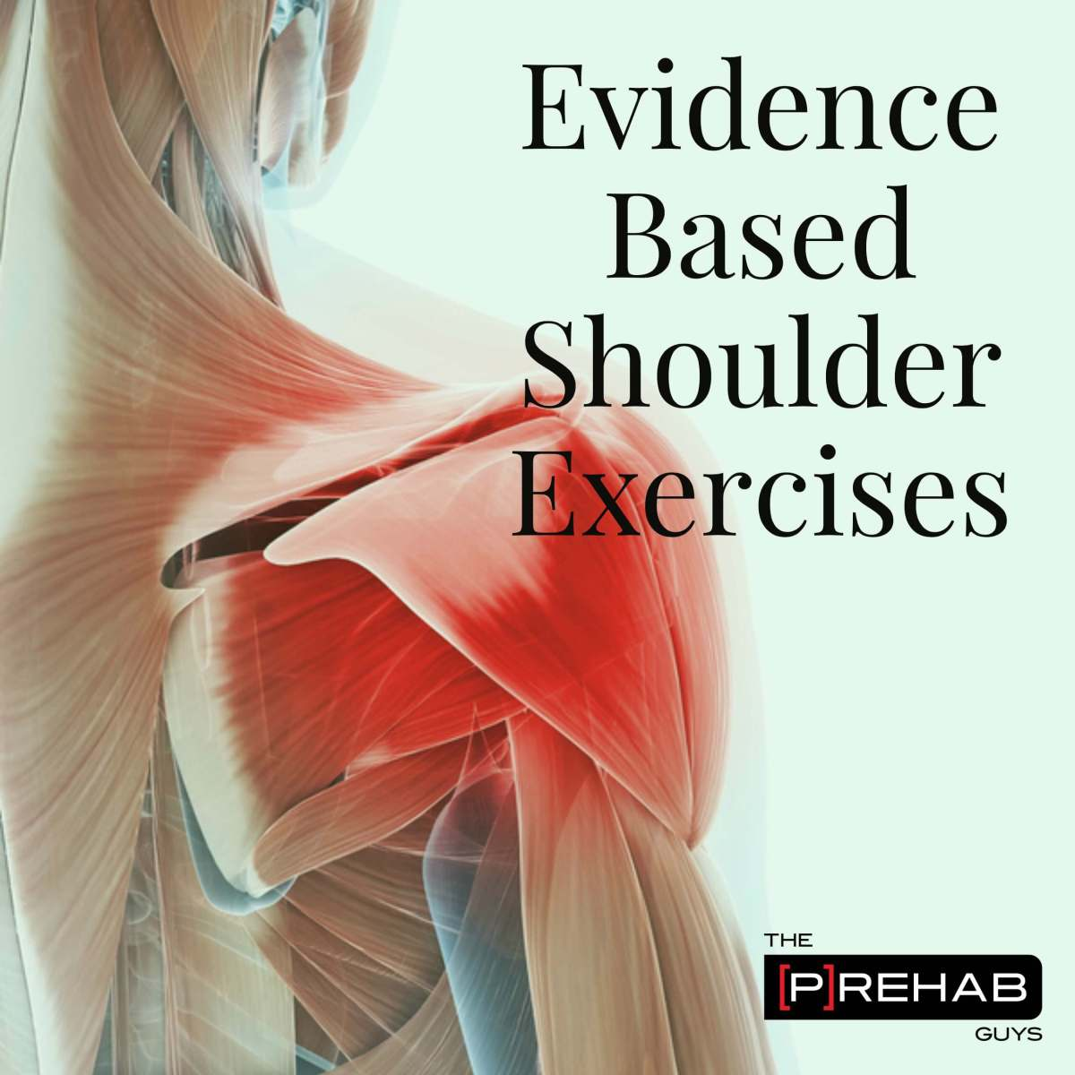 Evidence based Shoulder Exercises - How To Treat Muscle Imbalances